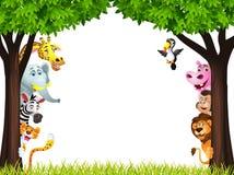 滑稽的通配非洲动物动画片 免版税库存照片