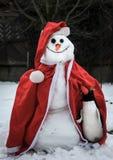 滑稽的雪人佩带的圣诞节衣裳和企鹅 库存照片