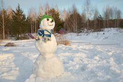 滑稽的雪人在森林里 库存照片