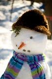 滑稽的雪人 免版税图库摄影