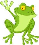 滑稽的青蛙动画片 免版税图库摄影