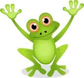 滑稽的青蛙动画片 免版税库存图片