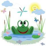 滑稽的青蛙 免版税库存照片