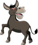滑稽的驴动画片 库存图片