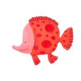 滑稽的鱼 免版税库存图片