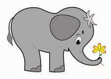 滑稽婴孩的大象 图库摄影