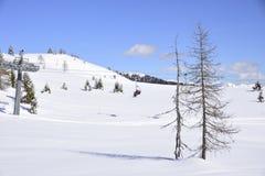 滑雪吊车在阿尔卑斯在一个晴朗的冬日 库存照片