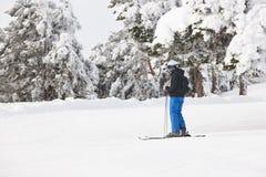 滑雪在一个美好的雪森林风景 滑雪雪体育运动跟踪冬天 免版税库存照片