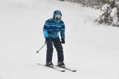 滑雪在雪森林风景 滑雪雪体育运动跟踪冬天 库存照片