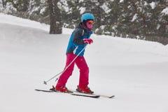 滑雪在雪森林风景 滑雪雪体育运动跟踪冬天 免版税库存图片