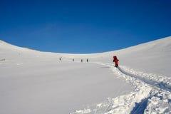 滑雪小组游人 免版税库存图片