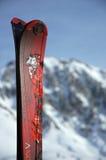 滑雪技巧 免版税库存图片
