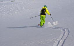 滑雪浏览 免版税库存照片