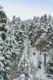 滑雪电缆车通过高杉树培养滑雪者和挡雪板在降雪以后 库存照片