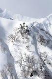 滑雪登山 免版税库存图片
