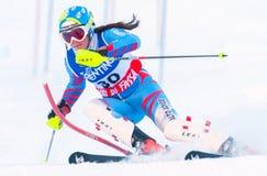 滑雪竞赛的参与者 免版税库存照片