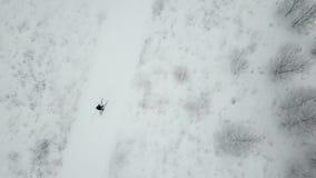 滑雪者训练  假定大教堂dmitrov克里姆林宫莫斯科明信片区域俄国冬天 股票视频