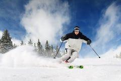 滑雪者 库存照片