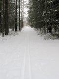 滑雪跟踪木头 免版税库存图片