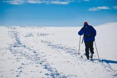滑雪跟踪 免版税图库摄影