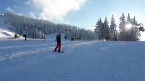 滑雪 库存图片