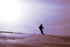 滑雪 免版税库存图片