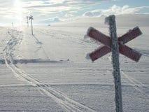 滑雪 免版税图库摄影