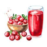 滚保龄球用成熟红色蔓越桔和杯蔓越橘汁 水彩手拉的例证,隔绝在白色背景 向量例证