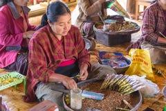 滚动传统雪茄的妇女在Inle湖,缅甸 库存图片