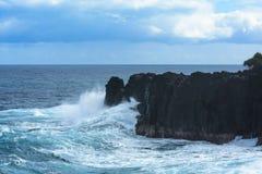 滚动在火山岩的膨胀在雷乌尼翁冰岛 免版税库存图片