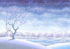 滚多雪的冬天的横向 库存照片