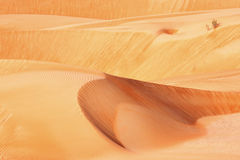 滚阿拉伯沙漠的沙丘 图库摄影