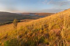 滚非洲高地的小山南部 免版税库存照片