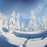 满天星斗的天空在冬天多雪的夜 在新年` s伊芙的意想不到的银河 预期假日 严重 免版税图库摄影