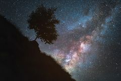 满天星斗的天空是银河和一个山坡与树 背景美好的图象安装横向晚上照片表使用 免版税库存照片