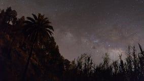 满天星斗的黄雀色夜空 库存照片