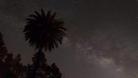 满天星斗的黄雀色夜空 库存图片