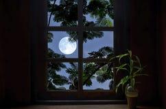 满月和叶子在窗架 库存图片