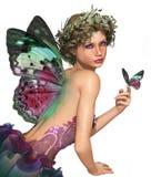 满足一只蝴蝶加州 库存图片