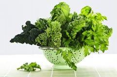 滤锅深绿阔叶蔬菜 免版税图库摄影
