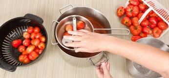 滤锅领域研的手动压榨机蕃茄 免版税图库摄影