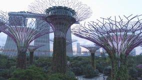 滨海湾公园和小游艇船坞海湾沙子的鸟瞰图超级树树丛在新加坡 射击 公园的顶视图 库存照片