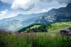 滨海阿尔卑斯山脉的峰顶 与一个草草甸的山风景前景的 免版税库存照片