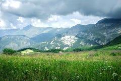 滨海阿尔卑斯山脉 与一个草草甸的山风景前景的 库存图片