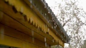 滴下从屋顶的雨珠 股票录像