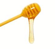滴管蜂蜜隔离 免版税库存图片