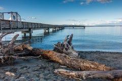 漂流木头和码头 免版税库存图片