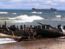 漂流木头苏必利尔湖畔 免版税图库摄影