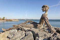 漂流木头雕塑在多伦多,加拿大 免版税库存照片