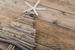 漂流木头与海星的圣诞树 免版税库存图片